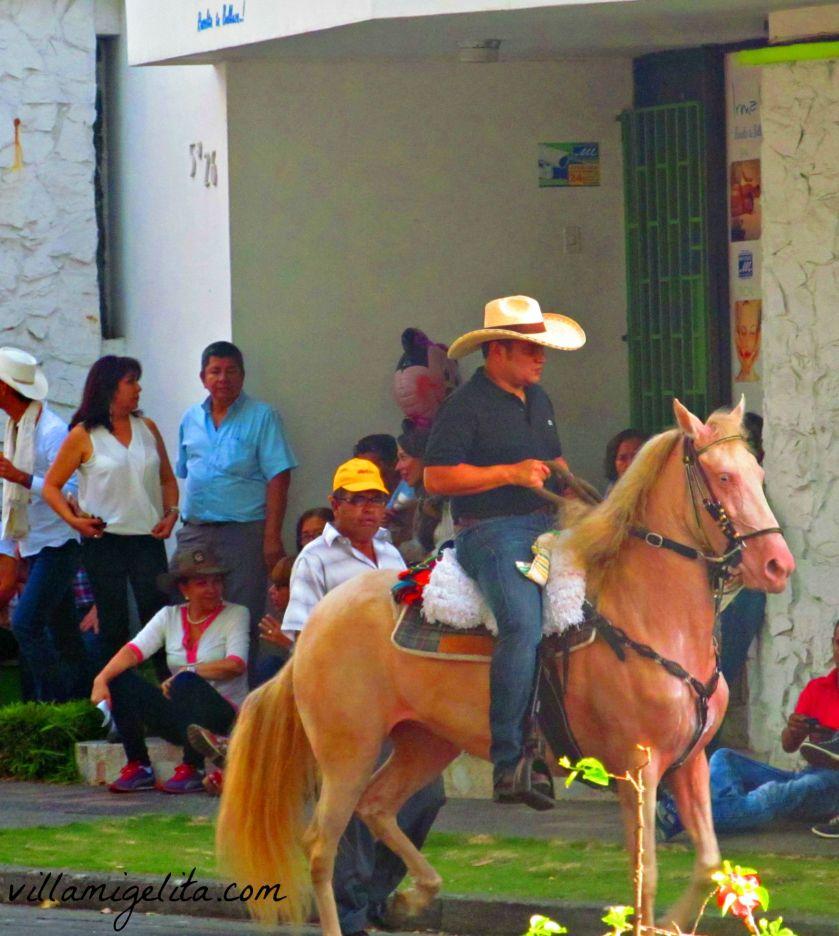 horse-show-buga-057