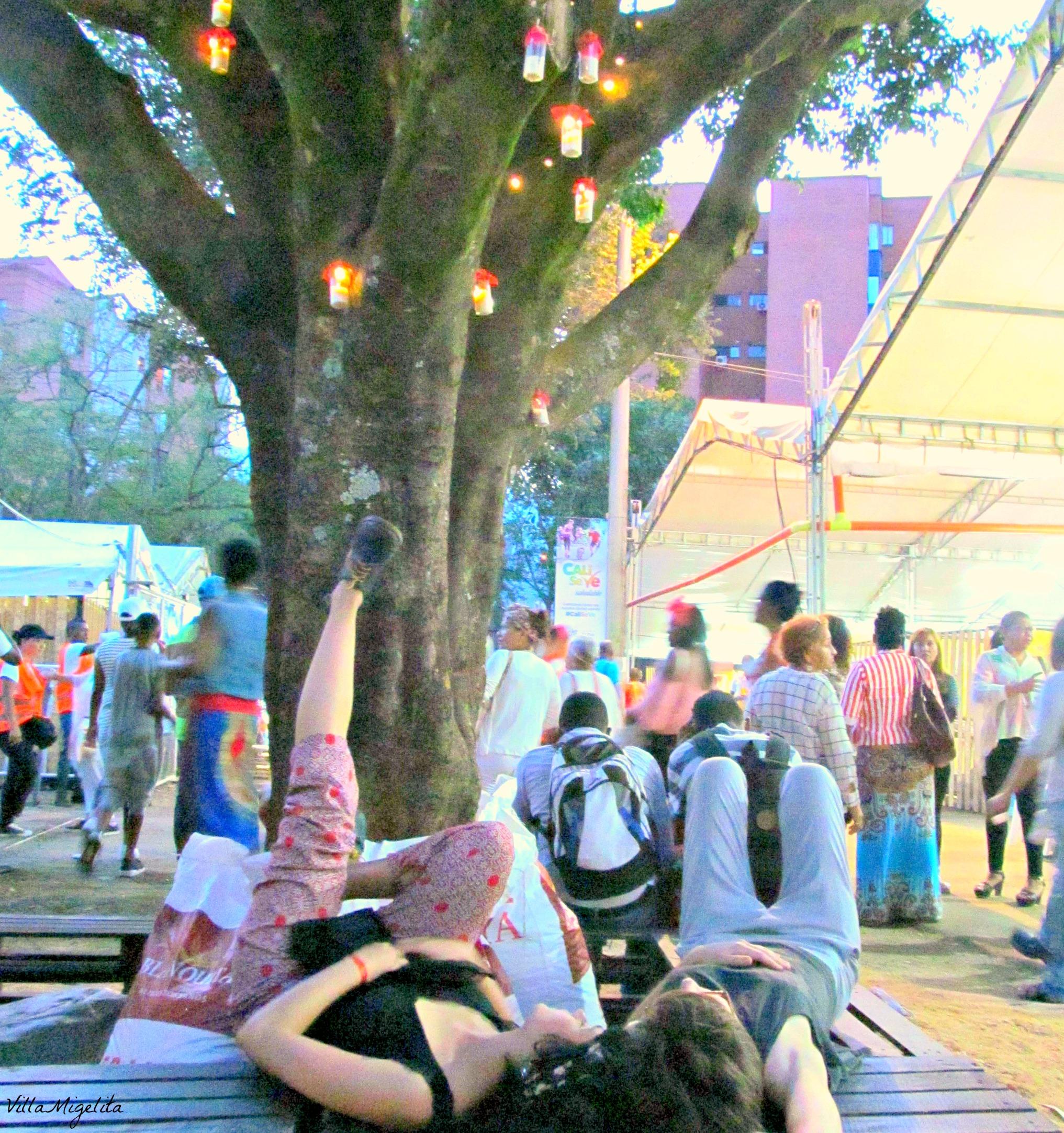 Pacific coast festival 017