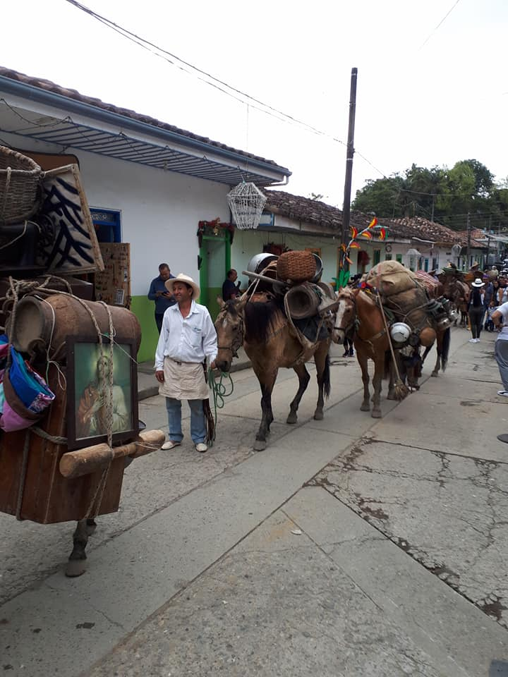 Colombian man with donkeys